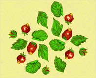 传染媒介样式-夏天莓果背景 免版税图库摄影
