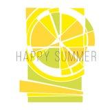 传染媒介概念夏天太阳 免版税库存照片