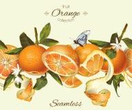 传染媒介橙色无缝的横幅 免版税图库摄影