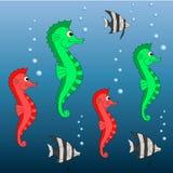 传染媒介海马 库存图片
