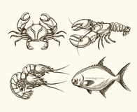 传染媒介海鲜在手中被画的样式 免版税库存图片