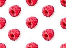 传染媒介现实莓无缝的样式 库存图片