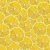 传染媒介现实被切的柠檬无缝的样式 库存照片