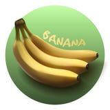传染媒介现实香蕉 库存图片
