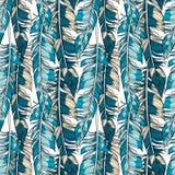 传染媒介用羽毛装饰无缝的样式, 皇族释放例证