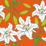 传染媒介百合无缝的样式在橙色背景中 库存图片