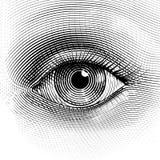 传染媒介眼睛 免版税库存照片