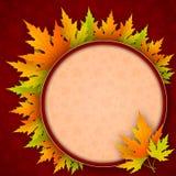 传染媒介秋天背景与槭树叶子和与文本的空间 库存图片