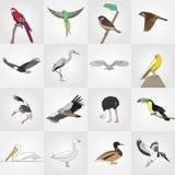 传染媒介线平的风格化鸟集合 免版税库存图片