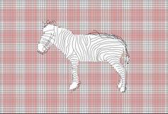 传染媒介滤网和斑马 免版税图库摄影