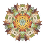传染媒介美丽的Deco上色了等高星,被仿造的设计元素 向量例证