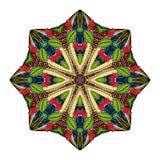 传染媒介美丽的Deco色的坛场 免版税图库摄影