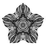 传染媒介美丽的Deco黑色星 库存照片