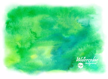 传染媒介绿色抽象手拉的水彩背景 免版税图库摄影