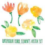 传染媒介花卉集合 与叶子和花,画的水彩的五颜六色的花卉收藏 春天或夏天设计邀请的, 免版税库存图片