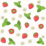 传染媒介草莓和花纹花样 库存图片