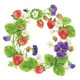 传染媒介草莓圆的框架 免版税库存图片
