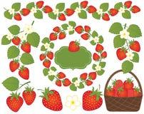传染媒介草莓被设置的包括的篮子、花圈、框架和花 传染媒介草莓 皇族释放例证