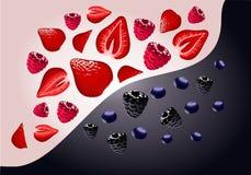传染媒介莓果例证 皇族释放例证