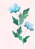 传染媒介蓝色和桃红色花背景 免版税库存图片
