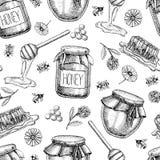 传染媒介蜂蜜无缝的样式 背景被画的现有量葡萄酒 库存照片