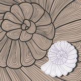 传染媒介蜗牛的背景样式 库存照片