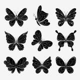 传染媒介蝴蝶 库存例证