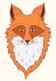 传染媒介画象Fox 免版税库存照片