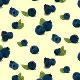 传染媒介越桔样式 手拉的黑莓装饰印刷品 夏天维生素纹理,纺织品饮食盖子 向量例证