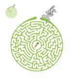 传染媒介迷宫、迷宫用兔子和红萝卜 库存照片