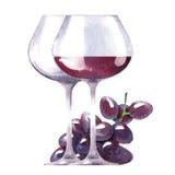 传染媒介酒和葡萄水彩剪影  免版税库存照片