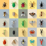 传染媒介长的阴影臭虫昆虫集合 免版税库存图片