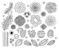 传染媒介集合手拉的花和叶子 库存例证