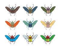 传染媒介颜色甲虫 免版税库存照片