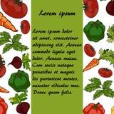 传染媒介食物样式 向量例证