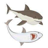 传染媒介鲨鱼字符 免版税库存照片