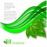 传染媒介eco叶子和绿色波浪 库存图片