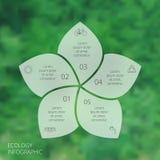 传染媒介infographic圈子的eco 库存照片
