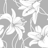 传染媒介lilly无缝的样式 库存照片