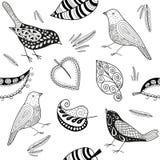 传染媒介seamles patern乱画鸟和叶子 库存图片