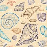 传染媒介seashalls无缝的样式 库存图片