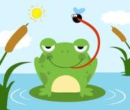 传染性的飞行青蛙