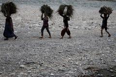 传统上坚持捆在他们的头的草的小组印地安妇女在河岸在吉姆Corbett国家公园,印度 图库摄影
