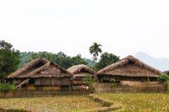 传统不自然的房子这迷人的家庭逗留属于一个地方Tay家庭 图库摄影