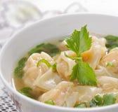 传统中国饺子的汤 图库摄影