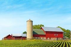 传统农场 免版税图库摄影