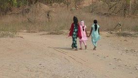 传统印地安衣裳的未认出的印地安妇女 女孩在密林走  股票录像