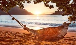 传统吊床在日落的树荫下在一个镇静热带海滩 免版税库存照片