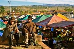 传统哥伦比亚的服装的人 免版税库存照片