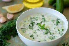 传统土耳其语喝, tzatziki,做由酸奶,大蒜,  免版税图库摄影